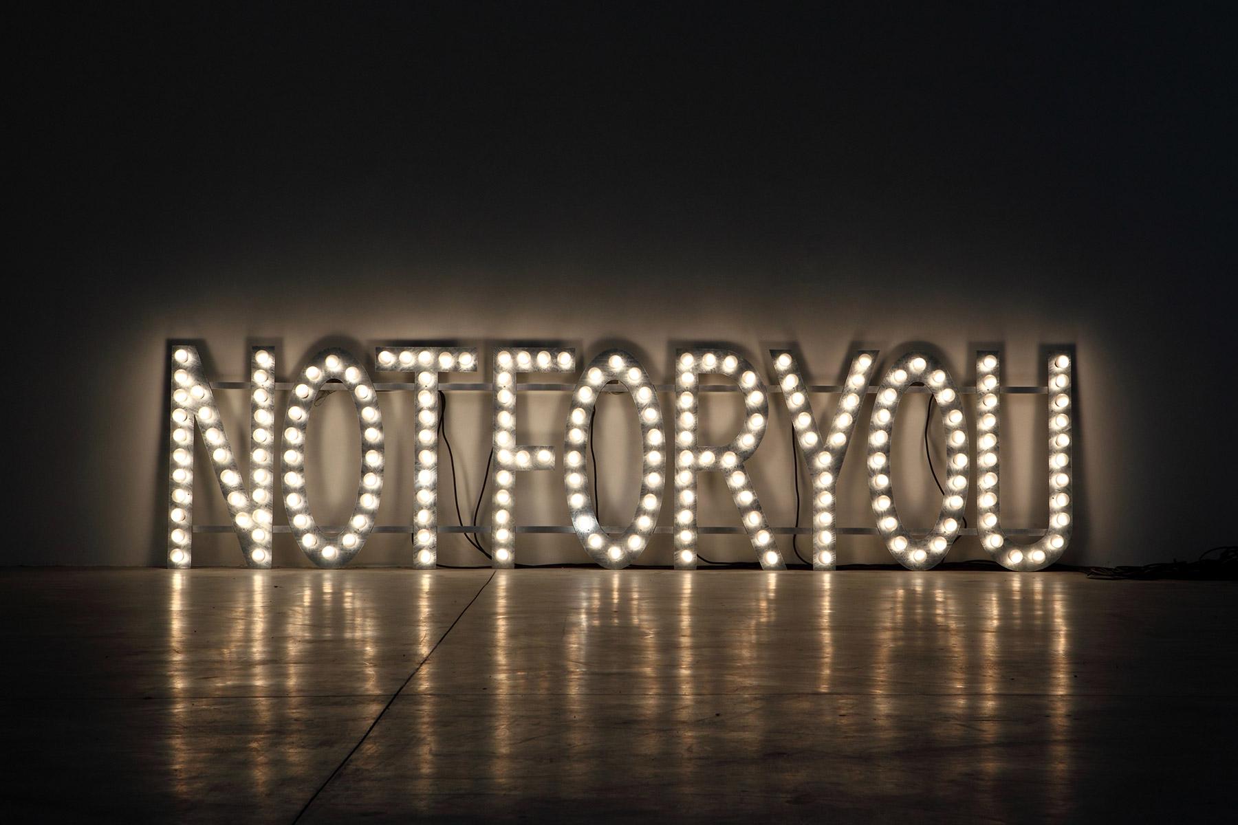 Monica Bonvicini - NOT FOR YOU